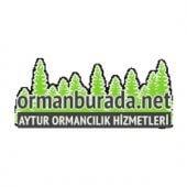 AYTUR ORMANCILIK HİZMETLERİ